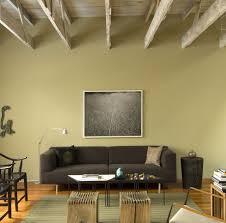 seafoam green living room ideas u0026 photos houzz