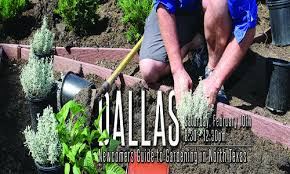newcomers guide to gardening in north texas water university