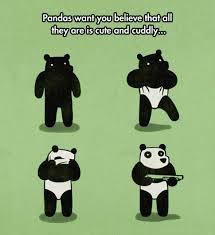 cartoon panda meme panda best of the funny meme