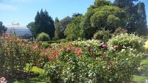 wollongong botanic gardens 6 christchurch activities on a student budget tean