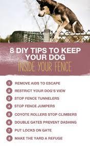 292 best dog training tips images on pinterest your dog