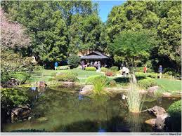 Brisbane Botanic Gardens Mount Coot Tha by 15 Fun And Free Things To Do In Brisbane Thesmartlocal