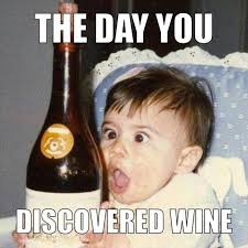 Funny Wine Memes - 25 of the best wine memes ever created