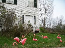 creator of pink flamingo lawn ornaments passes away at 79 consumerist