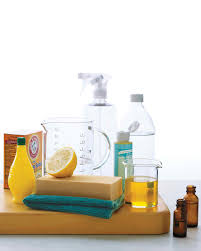 clean green natural cleaning products martha stewart