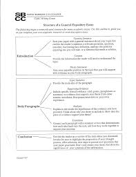 argumentative research synthesis essay