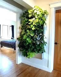 indoor herb garden wall indoor wall herb garden innovative kitchen wall herb garden and