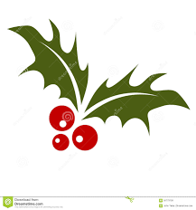 holly leaf images collection 25