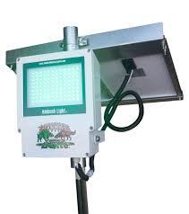 hog hunting lights for feeder solar feeder college paper service wfassignmentuyct lasvegasdentists us