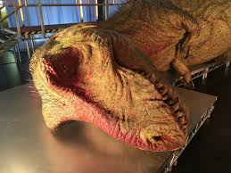 national geographic u0027s rex autopsy roaring return