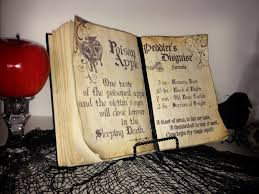 203 Best Frugal Halloween Ideas Images On Pinterest Halloween G Rated Diy Halloween Spell Book