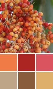 Autumn Color Schemes 184 Best Color Trends Images On Pinterest Colors Color Trends