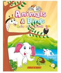 buy kids colouring books u0026 drawing books india sketch