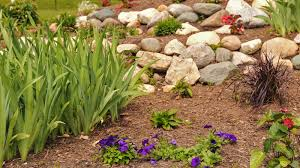 best landscapers on angie u0027s list angie u0027s list