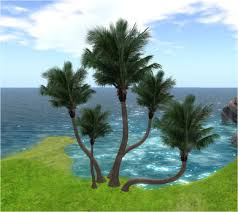 second marketplace 5 palm trees low prim high quality texture