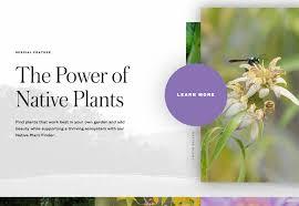 native plant finder essential design trends november 2016 webdesigner depot
