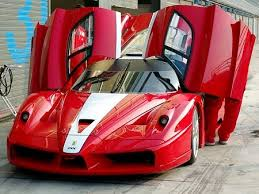 enzo fxx for sale fxx for sale cars