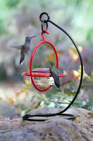 Backyard Birds Store by Hummingbirds Drinking Nectar From A Stand Alone Bird Feeder