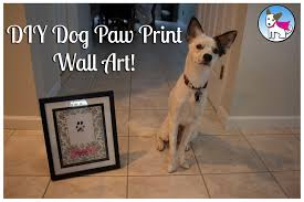 diy dog paw print wall art youtube