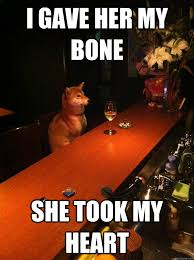 Lonely Meme - i gave her my bone she took my heart lonely dog quickmeme