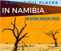 6 beautiful places to visit in namibia for the best nature