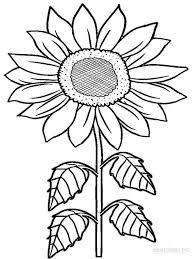 Sunflower Coloring Pages Download And Print Sunflower Coloring Pages Sunflower Coloring Page
