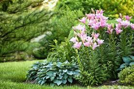 gardening ideas 20 best yard landscaping ideas for front and backyard