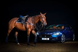 ferrari horse vs mustang horse maserati luxury polo horse saddle is a thing of unique beauty
