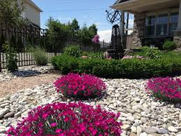 exellent front garden ideas no grass find this pin and more on