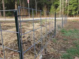 a backyard guide install dog how to build a dog fence run ideas