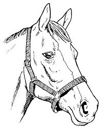 templates clipart horse pencil and in color templates clipart horse
