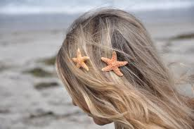 starfish hair clip my reviews on this starfish hair clip beauty