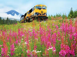 Alaska travel services images English only tours alaska travel services jpg