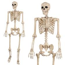 Plastic Halloween Skeletons 21 Unique And Insanely Cool Halloween Gifts For Your Friends