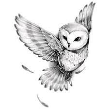 Owl Tattoos - the 25 best owl tattoos ideas on owl