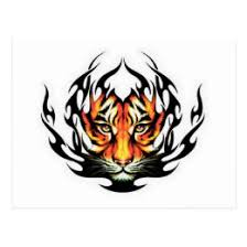tiger tribal postcards zazzle