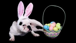 easter facts trivia 10 fun facts about easter youtube