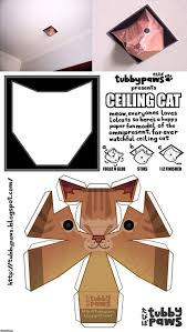 Make Your Own Cat Meme - image 302058 ceiling cat know your meme