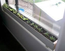 Winter Indoor Garden - best 25 indoor window garden ideas on pinterest herb garden