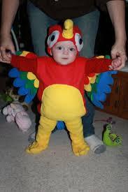 16 best parrot costumes images on pinterest parrot costume