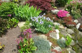 How To Make Rock Garden How To Create A Rock Garden