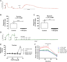 latrophilin receptors novel bronchodilator targets in asthma thorax