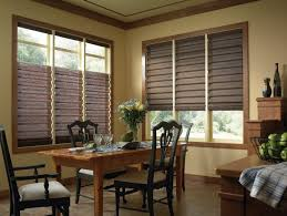 Drop Down Blinds Roman Shades Blinds