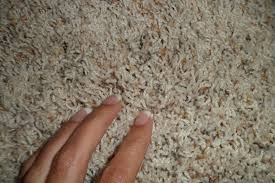 carpet squares cost nouveau walkway carpet tiles cheap carpet
