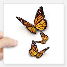 butterfly gifts butterfly gifts merchandise butterfly gift ideas apparel
