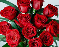 how much does a dozen roses cost how much does a dozen roses cost wales online