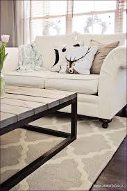 Allen Roth Area Rug Living Room Brilliant Furniture Lowes Rugs And Carpets Allen Roth