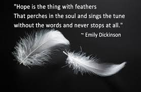 meaning of feathers