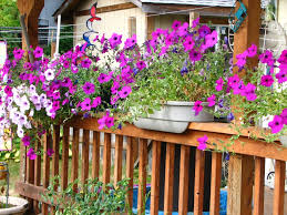 exterior beautiful deck rail planters with fresh flowers for home fashionable deck rail planters with beautiful flower for exterior