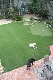 decorations green backyard ideas awesome gallery of interesting